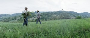 radovi u polju